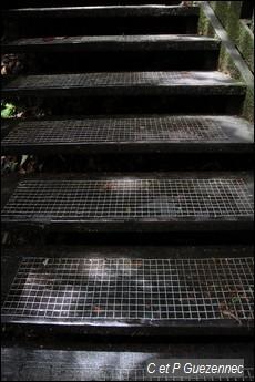 Marches d'escalier avec grillage anti-dérapant