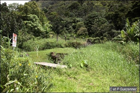 Site des Bains Chauds du Matouba
