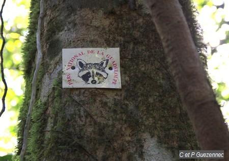 L'ancienne balise du Parc National de la Guadeloupe