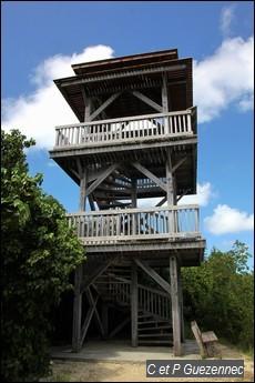 Tour Observatoire de la Mangrove