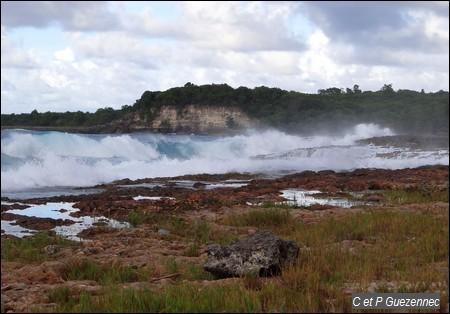 Les falaises de l'Anse Colas
